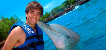 Swim with dolphins in Riviera Maya | Xelha Tours, deals and discounts