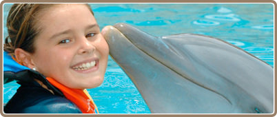 Swim with dolphins in Riviera Maya | Riviera Maya Tours, deals and discounts