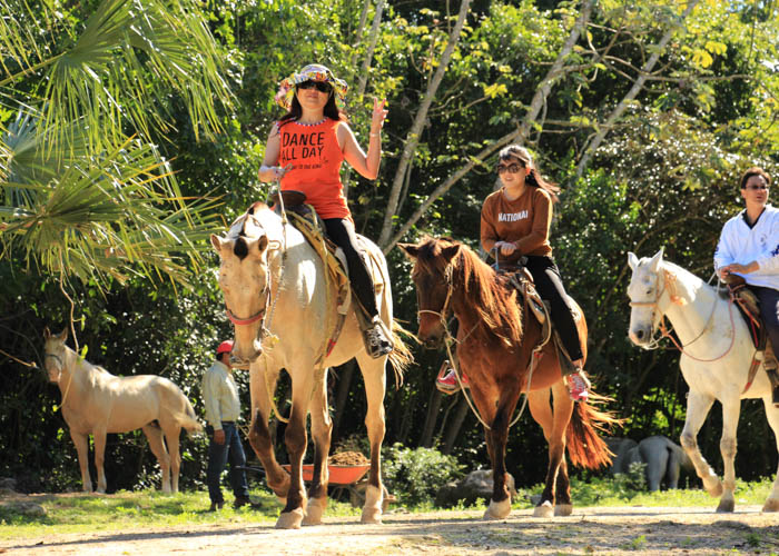 horseback-riding-cancun-lomabonita