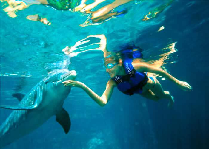 snorkel-with-dolphins-in-xelha