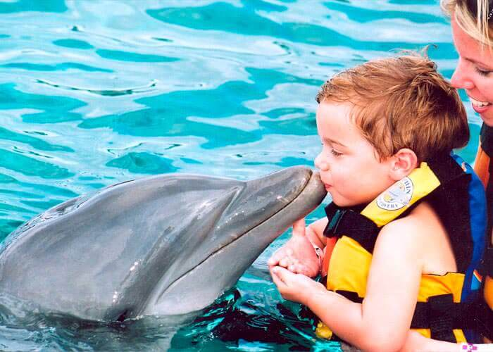 dolphin-encounter-islamujeres-baby-kiss