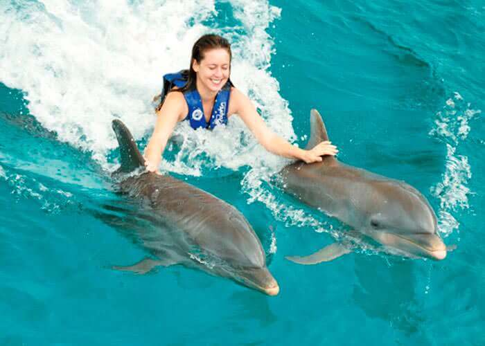 swimming-with-dolphins-islamujeres-dorsaltow