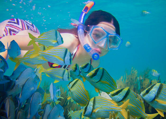 cancun-snorkel-tours-jungletour