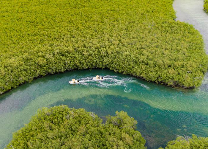 jungletour-prestige-cancun-nichupte-lagoon