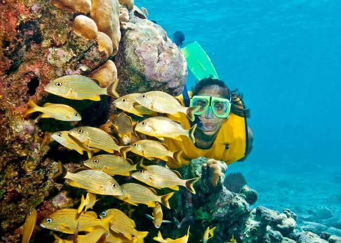 snorkel-tours-rivieramaya-yalku-inlet
