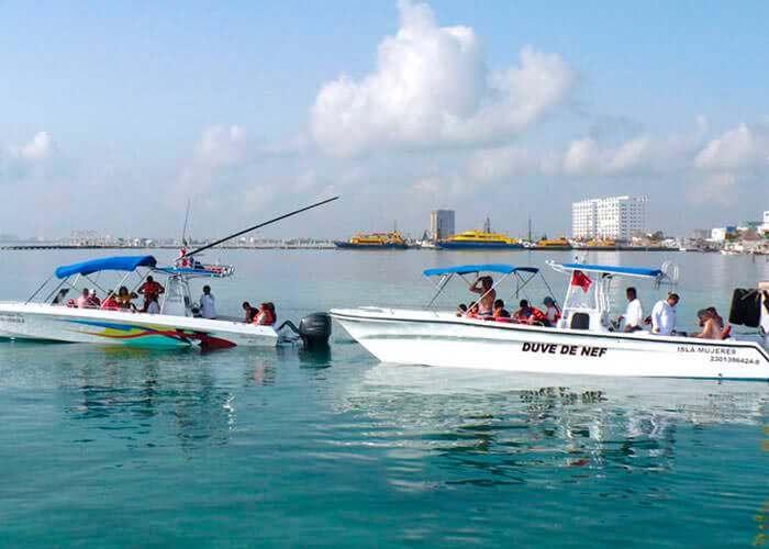cancun-whale-shark-tours