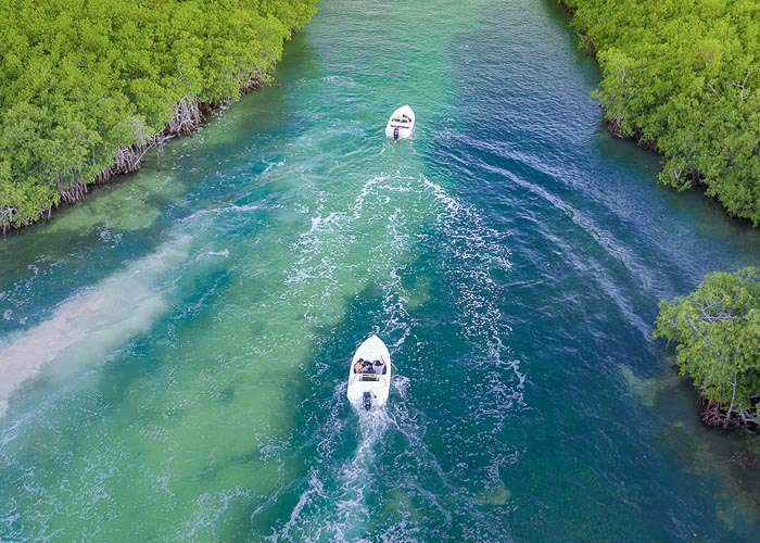 cancunactivities-jungletour-nauticpass-essential