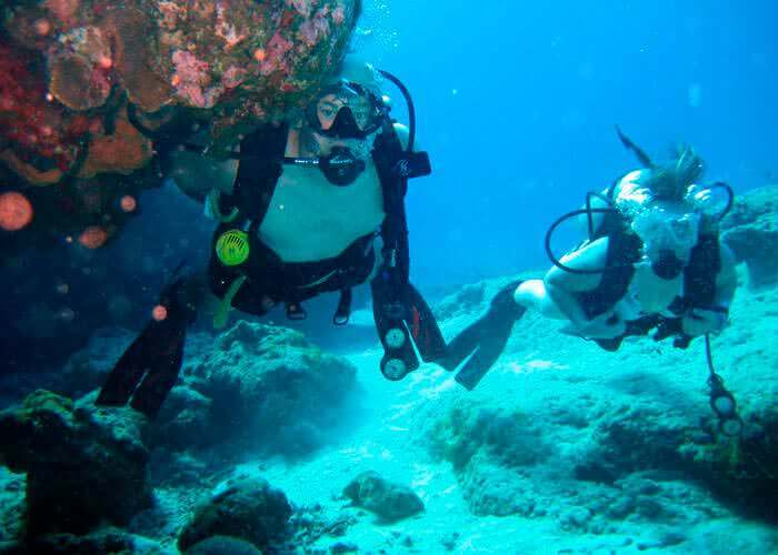 scubadiving-cancun-tours-musa