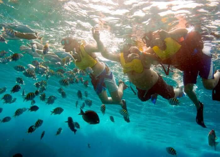 cozumel-tours-snorkel-reefs