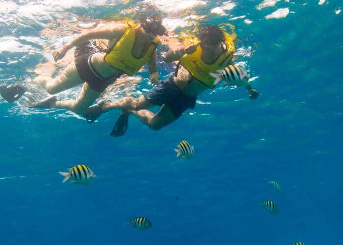 snorkel-cozumel-activities