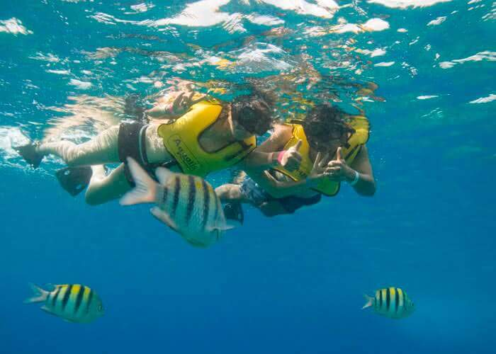 cozumel-activities-best-snorkel
