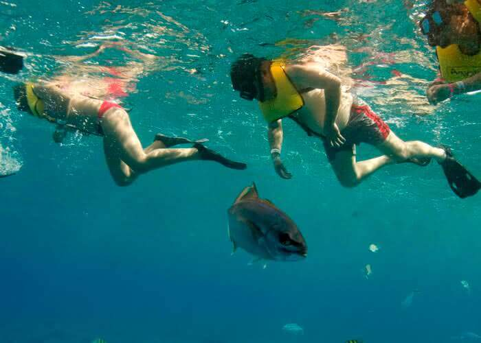 cozumel-snorkel-tours-couple