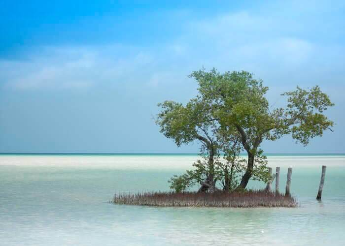 holbox-island-tour-from-cancun