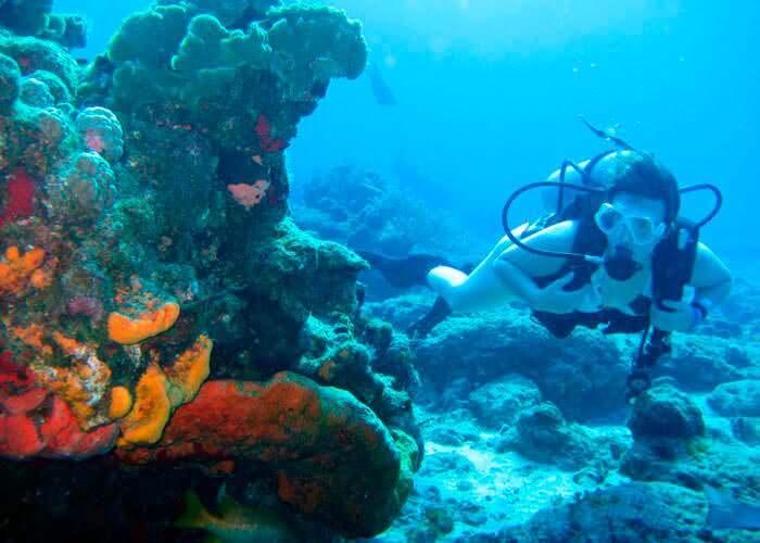 cancun-diving-musa-tour