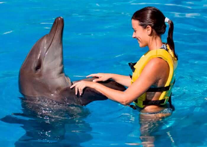 tulum-excursion-swimmingwithdolphins-handshake