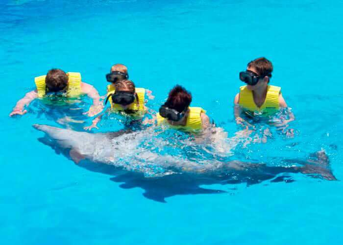 tulum-tours-swimmingwithdolphins-snorkel