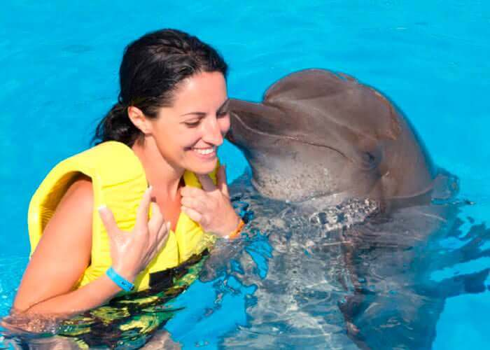 cancun-activities-tulum-and-swimwithdolphins