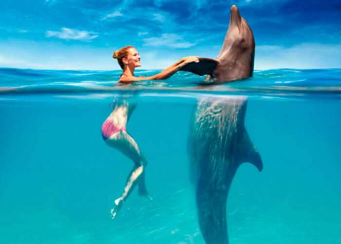 cancun-excursions-tulum-and-swimwithdolphins