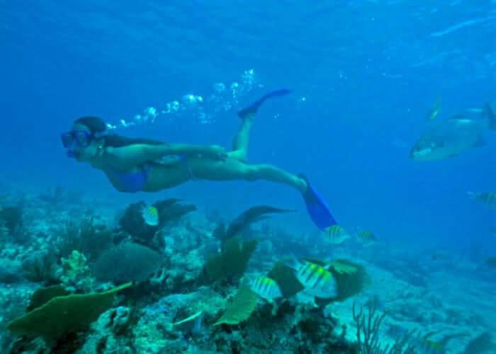 xcaretpark-tour-fromcancun-snorkel