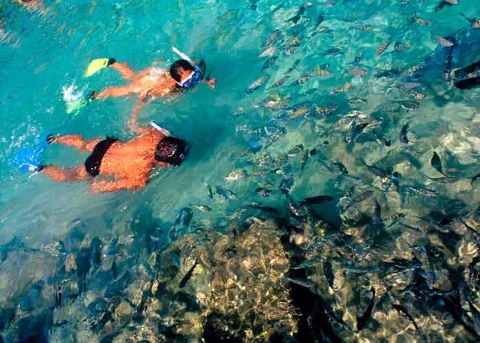 experiencias-xcaret-snorkel