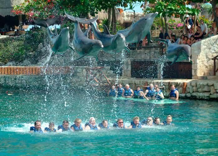 Xcaret Plus Tour Dolphin Ride Xcaret Park Tours