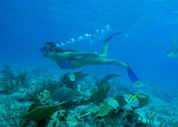 xcaret-tours-snorkel-inlet