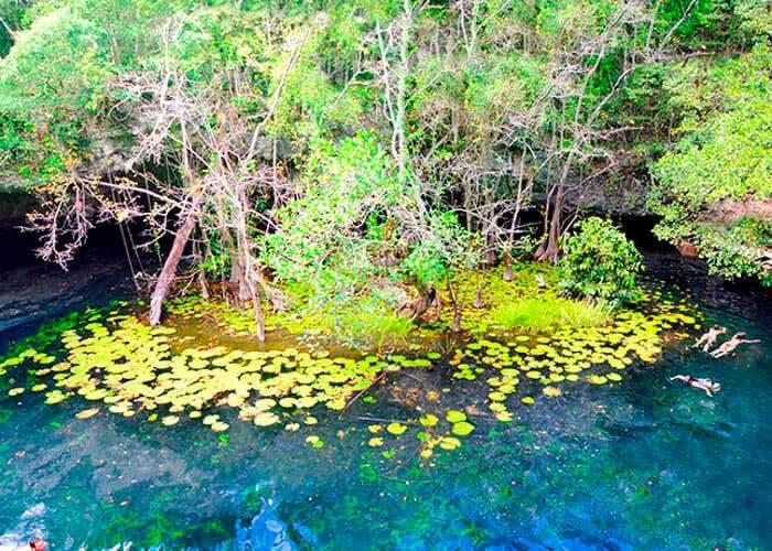 xenotes-cancun-tour