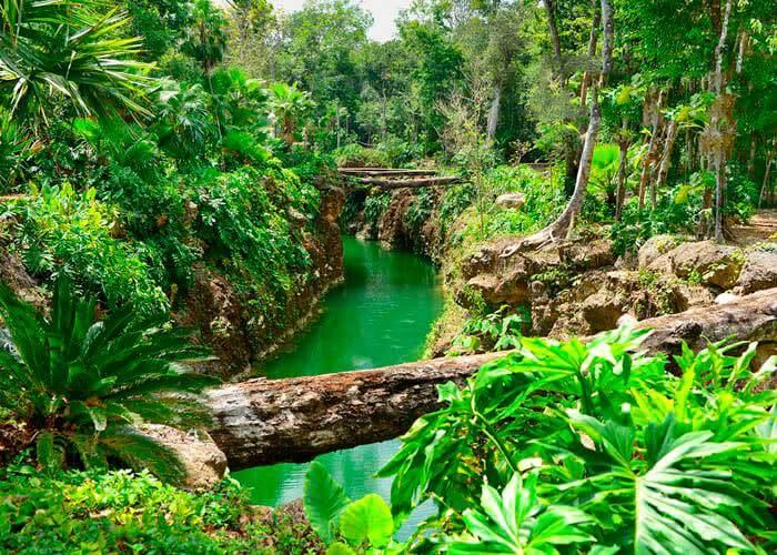 cenote-snorkeling-cancun-xenotes
