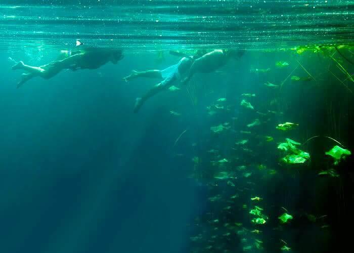 cenote-mexico-cancun-xenotes