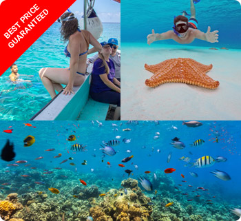 Cozumel Tours and Excursions
