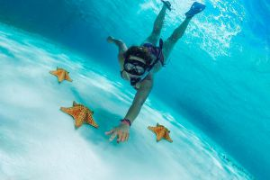 Young girl Snorkeling with Star fishi