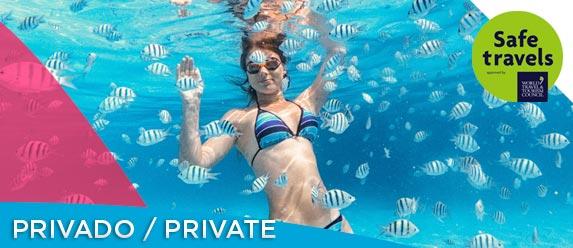cozumel snorkel private tour