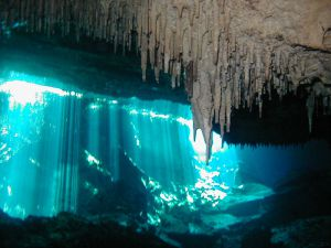 Divign in cenotes