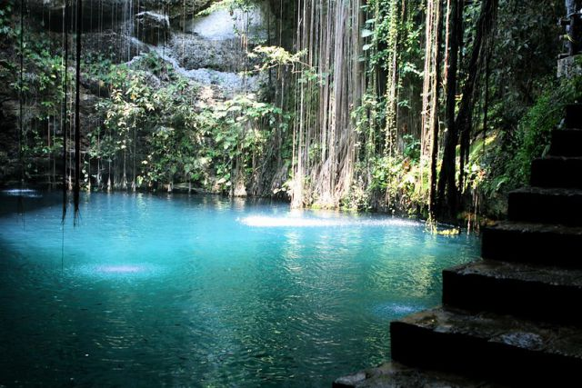 Cenote Fall View