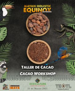 raw cacao bow