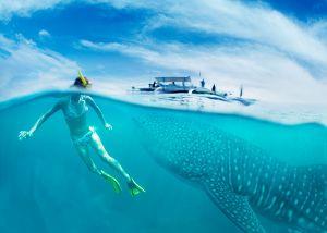 girl near a boat in cancun with grat fish